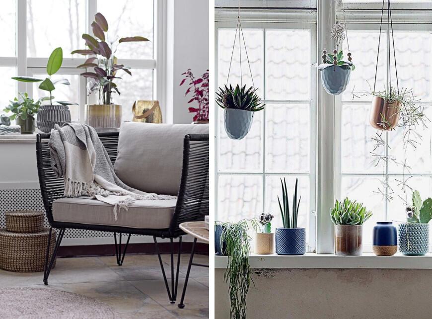 Sfeerbeeld 5 - Planten in de slaapkamer