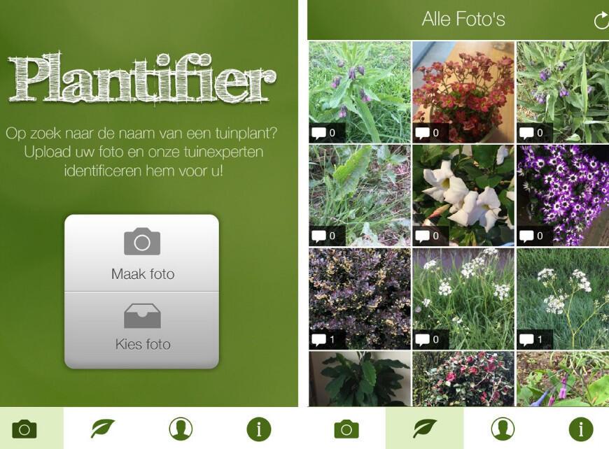 Sfeerbeeld 3 - Planten herkennen