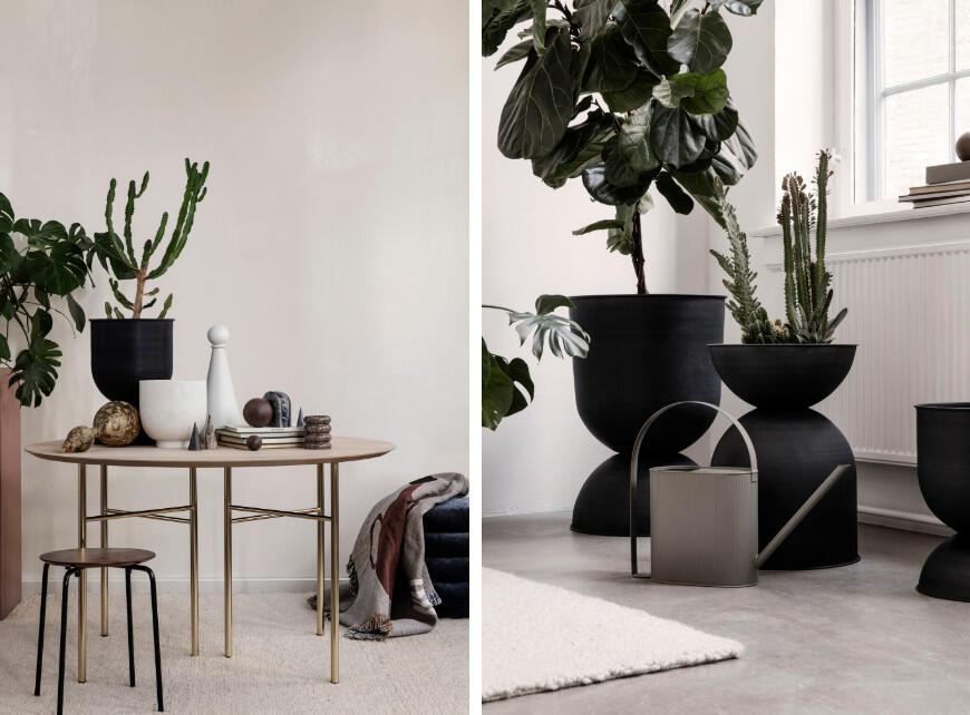 Sfeerbeeld 1 - Tropische planten