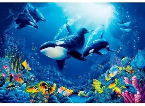 HOME AFFAIRE fotobehang »Onderwaterwereld«, 366x254 cm