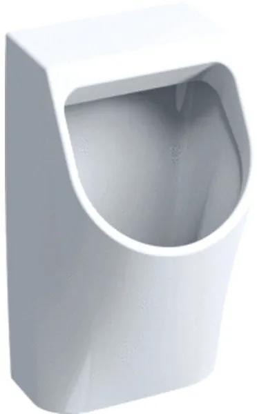 Geberit 300 urinoir 90 32,5x30cm met achterinlaat wit S8602500000G s8602500000g