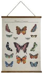Vintage poster - vlinders - 50x70 cm