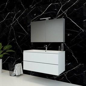 Spiegelkast Pandora 100x60x14cm Aluminium LED Verlichting Stopcontact Binnen en Buiten Spiegel Glazen Planken