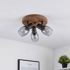 Ineska plafondspot, 3-lamps, rond - lampen-24