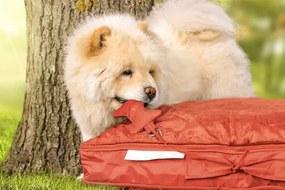 Sit&Joy Dog Bed Medium Zitzak - Rood
