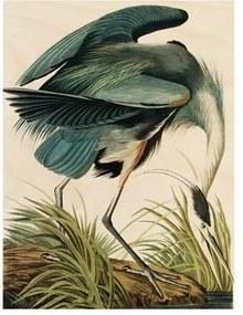Heron in gras Print op hout M