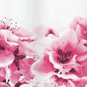 Douchegordijn Allibert Spirella Amanda Pink 180x200cm