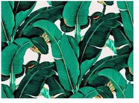Bananenblad Wandsysteem 200 x 220 cm