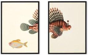 Vintage Set van 2 vissen, illustratie door the Natural History Museum, ingelijste print, A2, multi