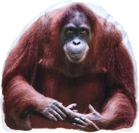 Kussen orang-oetang wit/bruin 62 cm
