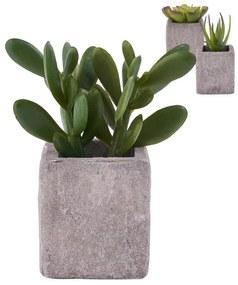 Plantje in pot met magneet - diverse varianten