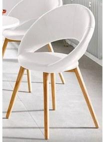 Andas stoel (set van 2 of 6)