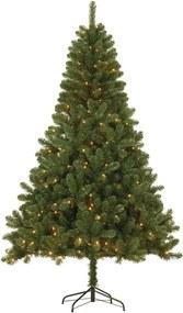 Edelman kerstboom Hamar LED - groen - 185x115 cm - Leen Bakker