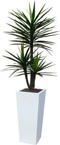Kunstplant Yucca