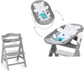 Kinderstoel Hauck Alpha+ Grey + Newborn Set Hearts