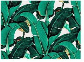 Bananenblad Wandsysteem 120 x 160 cm