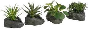 Kunstplant op steen, Home Affaire, 4-delig set