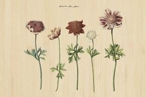 Wandkraft | Wanddecoratie Botanical Story breedte 148 cm x hoogte 98 cm multicolour decoratieve wandobjecten hout decoratie | NADUVI outlet
