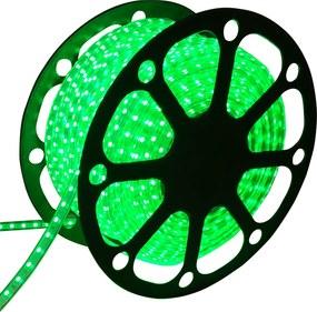 LED Lichtslang 50 meter Groen 60 LEDs per meter IP65 incl. netsnoer Plug & Play