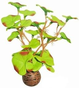 Zijde plantje 13 cm