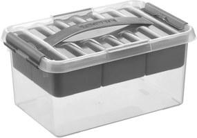 Q-line Multibox 6L - met inzet met vakverdeling - transparant/metallic