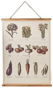 Vintage poster - groente - 50x70 cm