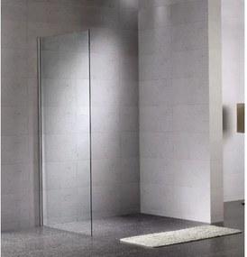 Bruynzeel Lector douchewand 60x210cm aluminium mat profiel en helder glas 280787k