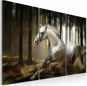 Schilderij - Paard in het bos, schimmel , zwart wit , 3 luik