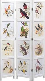 Kamerscherm met 3 panelen vogel 105x165 cm wit