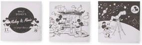 Disney canvas schilderijset Mickey & Minnie - zwart - 3x 30x30 cm - Leen Bakker