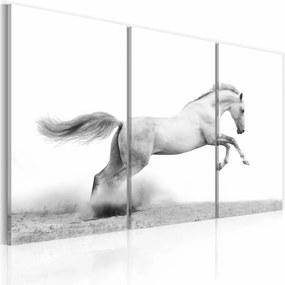 Schilderij - Paard in Galop, Wit/Grijs, 3luik