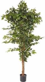Kunstplant Ficus Benjamini in 2 afm.