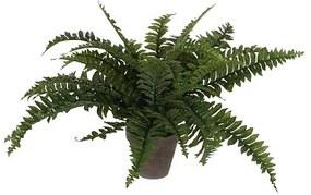 Kunstplant Varen 42 cm - Boston