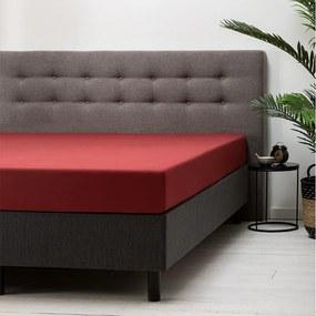 Fresh & Co 2-PACK: Hoeslaken Katoen - Rood 80 x 200 cm
