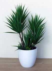 Plant in pot Chelsey groen
