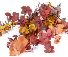 Eucalyptus/Ruscus Stuartiana Herfst (10st) - Bloomgift