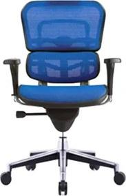 COMFORT bureaustoel Ergohuman Classic (zonder hoofdsteun) - Blauw