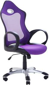 Computerstoel - Burostoel - Bureaustoel - iChair paars