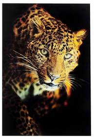 Kare Design Leopard Shaka Glas Schilderij Panter 120x80